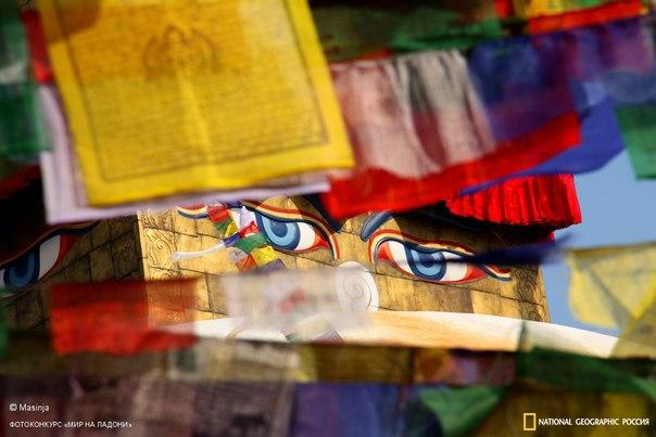 «Глаза Будды». Автор фото — Masinja, участник фотоконкурса «Мир на ладони», организованного на нашем сайте авиакомпанией Qatar Airways. Главный приз конкурса — поездка в Непал с командой National Geographic Traveler