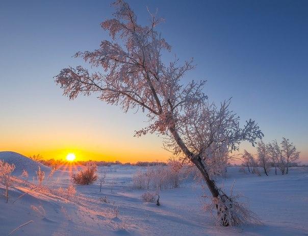 «Доброе утро». Рассвет в Оренбургской области. Автор фото — Павел Сагайдак