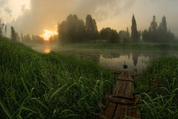 Туманный рассвет на реке Усвяче, Псковская область. Автор фото — Петр Косых