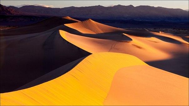 «Формы и свет». Дюны Долины Смерти в утреннем свете, Калифорния. Автор фото — Максим Летовальцев