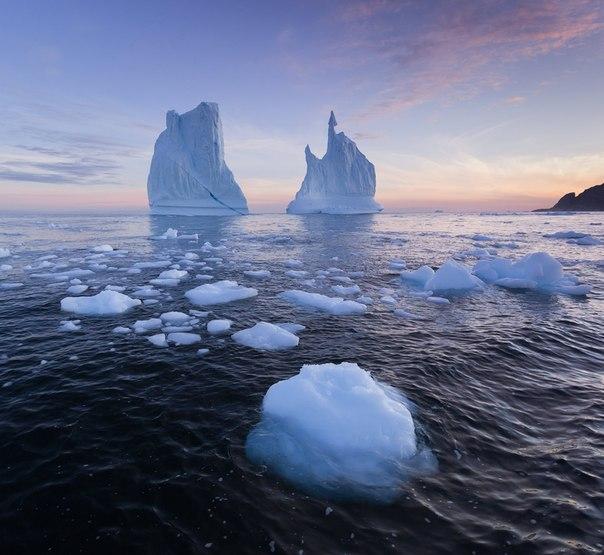 Айсберги у берегов Гренландии. Автор фото — Виктория Роготнева