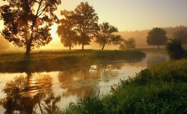 Весенний рассвет на реке Волчьей, Харьковская область. Автор фото — Виктор Тулбанов
