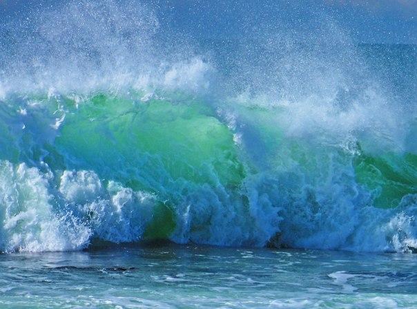 На нашем сайте появился новый тест, посвященный морям. Ответьте верно на 15 вопросов, и у вас появится шанс выиграть карту для посещения фитнес-клуба «Кимберли-Лэнд», который уже этим летом откроет большой бассейн с морской водой. Победителя определим после праздников
