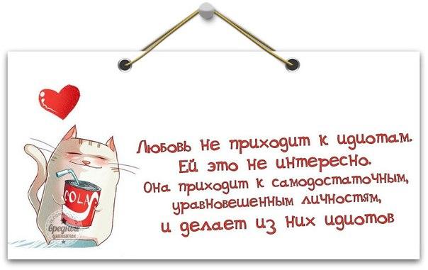 http://cs7065.vk.me/c540102/v540102880/8f8e/ccybe8Ulw9o.jpg