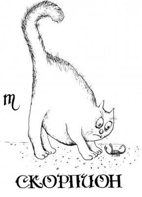 10 принципов знаков зодиака))) A2EnXHzXUhs