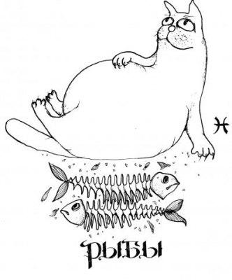 10 принципов знаков зодиака))) PpphOsfHfGA
