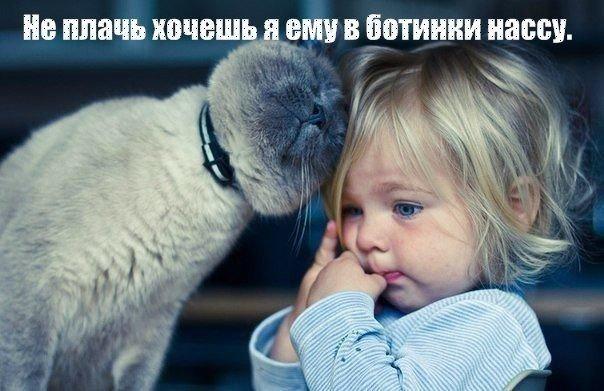 http://cs14106.vk.me/c540103/v540103036/53714/I_omTKdv_jo.jpg
