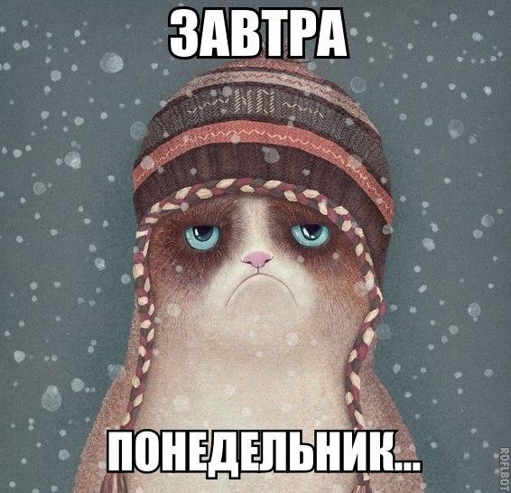 котятки понедельник грустнота
