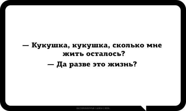 http://cs7062.vk.me/c540103/v540103098/23799/nrrkUxuYNx0.jpg