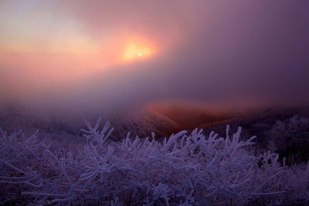 Закат на склонах Кацехура, Малый Кавказ. Автор фото: Егор Никифоров.