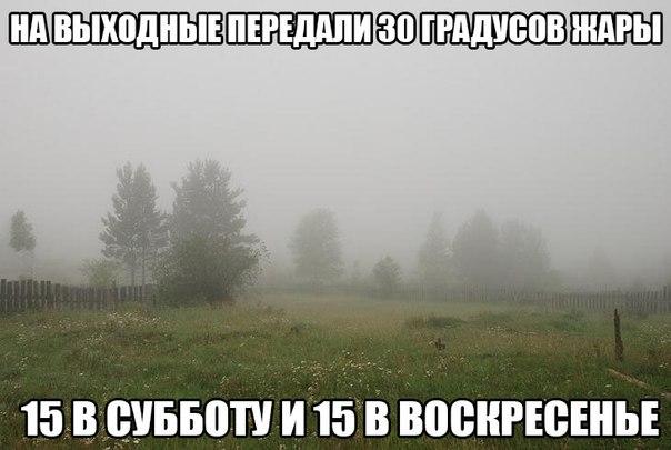 http://cs14102.vk.me/c540103/v540103215/43d20/ObsUf9Vru10.jpg