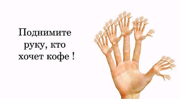 http://cs14111.vk.me/c540103/v540103278/21887/hmtUscvVSjQ.jpg