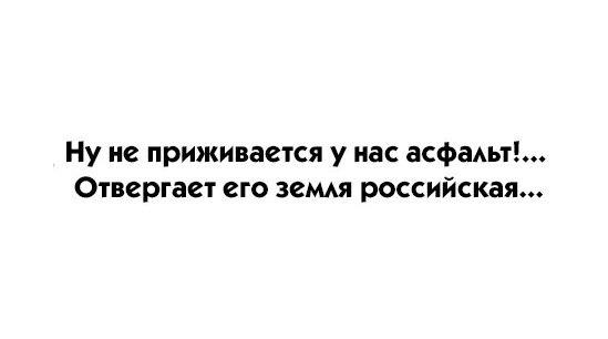 https://cs7066.vk.me/c540103/v540103306/61971/M4-3VxV1mzo.jpg