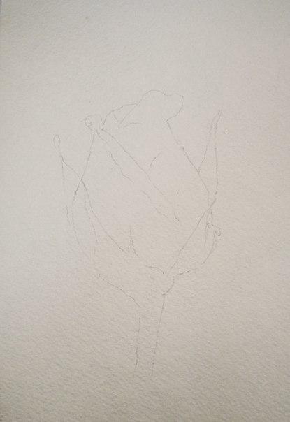 Цветок акварелью (7 фото) - картинка