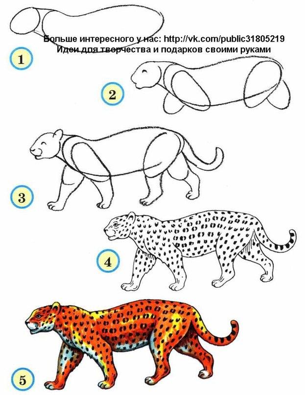 Рисованные животных бесплатно