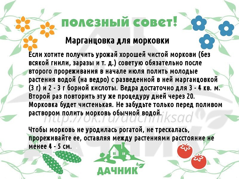 Йод применение при выращивании земляники 44