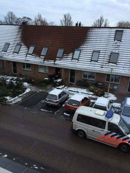 История следующая: Голландские парни соорудили в доме промышленную плантацию марихуаны, с подогревом, подсветочкой, все по высшему классу. Жили себе не тужили, не зная горя, и так бы оно и шло себе, но как назло... выпал снег.