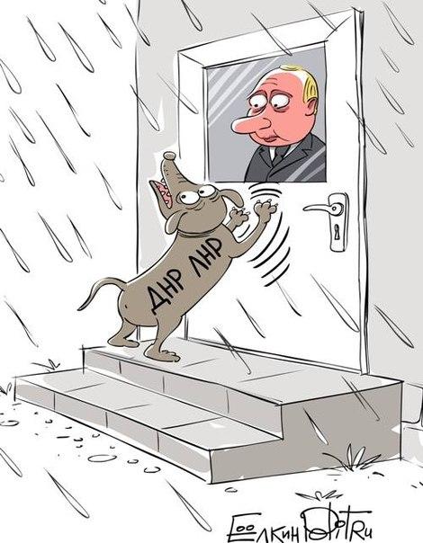 Террористы наращивают группировку своих войск в полосе Счастье-Станица Луганская, - ИС - Цензор.НЕТ 7269