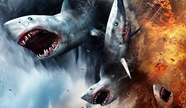 Подборка самых лучших фильмов про акул-убийц.  Забирай на стену, чтобы не потерять!
