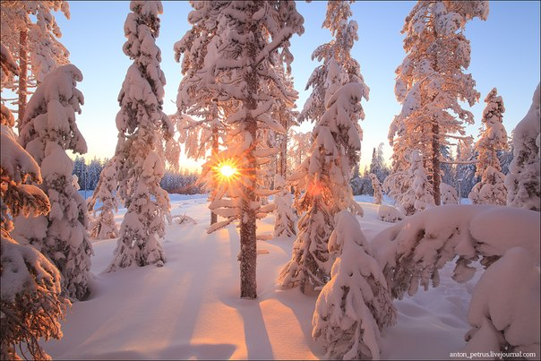 Гора Левитунтури, Финляндия. Автор фото: Антон Петрусь.