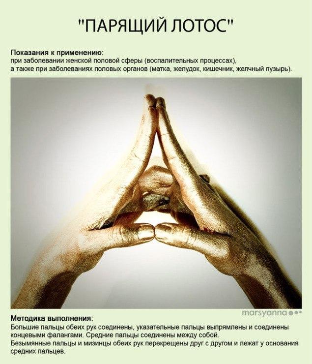 Мудры - йога для пальцев. фото с описанием UKu_ufQ6aHo