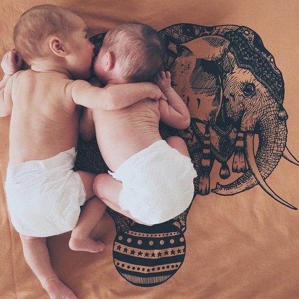 Сестра — это лучший друг, от которого невозможно избавиться… (6 фото) - картинка