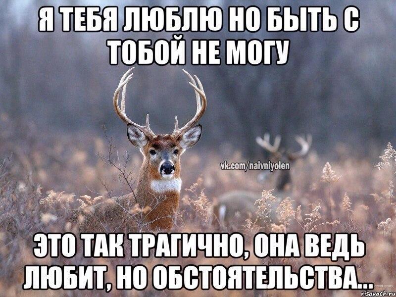 http://cs14114.vk.me/c540103/v540103845/b159/Y4c8B-a3MkE.jpg