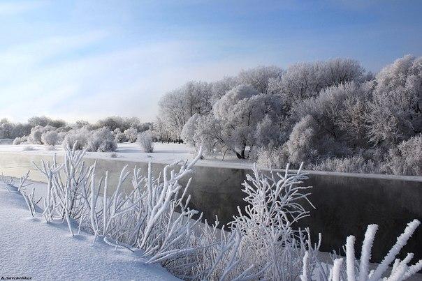 Морозный день, Брянская область. Автор фото — Константин Савченков