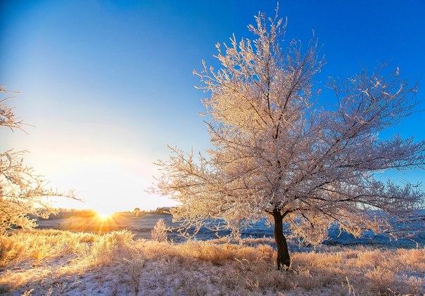 Рассвет в Орске, Оренбургская область. Автор фото — Павел Сагайдак