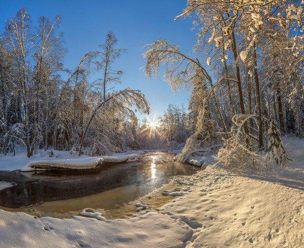Река Рощинка, Ленинградская область. Автор фото — Фёдор Лашков