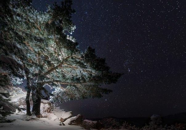 Зимняя ночь на Алтае. Автор фото — Павел Силиненко: Спокойной ночи!