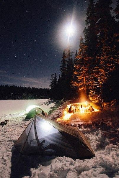 Этой зимой, даже если мы укутаемся, холодное равнодушие заставит промерзнуть до...