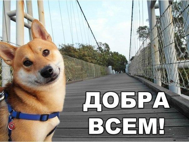 Всяко - разно 32 )))