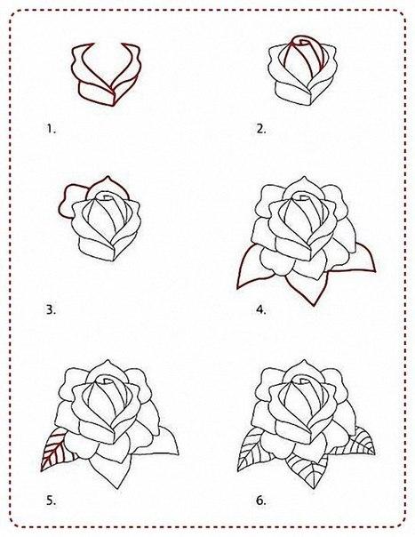 Учимся рисовать розы.