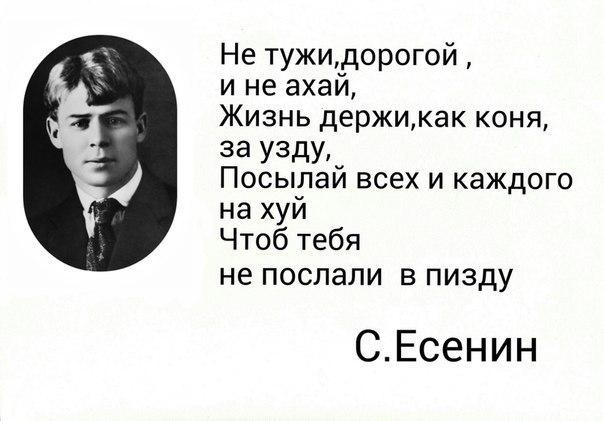 Есенин не тужи дорогой стих оригинал