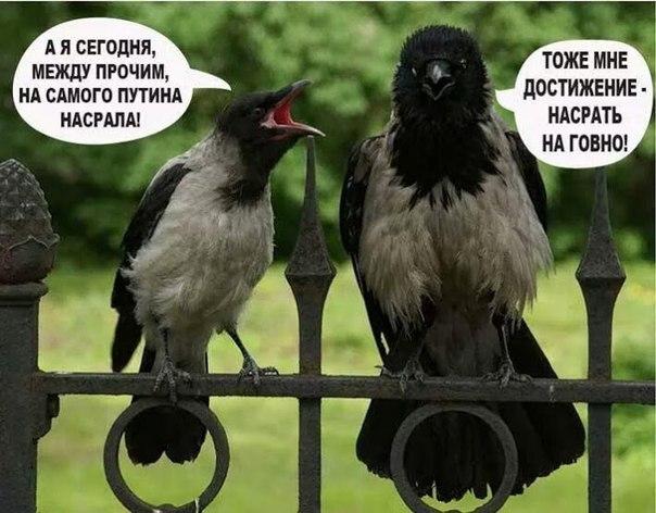 Россия регулярно устраивает провокации у границ стран Балтии, - СМИ - Цензор.НЕТ 3500