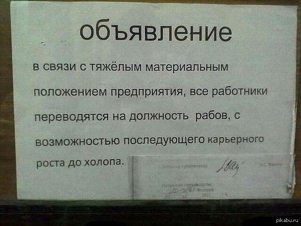 http://cs14114.vk.me/c540104/v540104697/1b5d8/c5V3Vp4o6OA.jpg