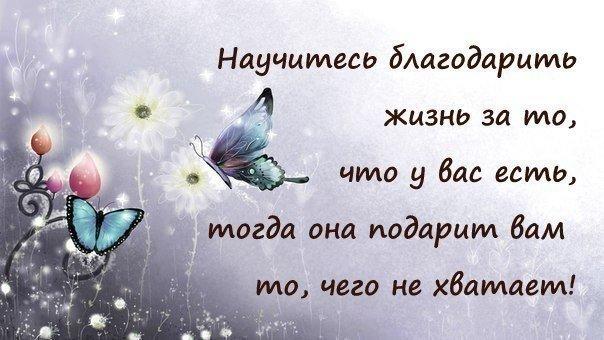 http://cs540100.vk.me/c540104/v540104856/1a4dc/l0V8oJjmrr4.jpg