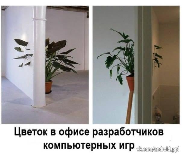 8dbxPBkmv7I.jpg