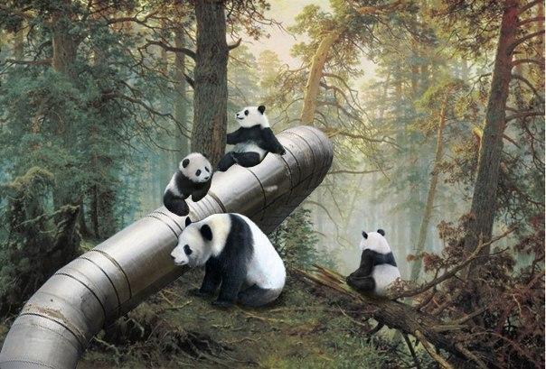 Последствия присоединения Крыма и газового контракта с Китаем для российской экономики