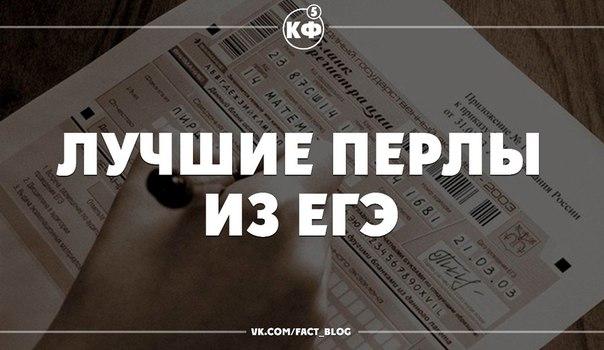 сон раскольникова мини: