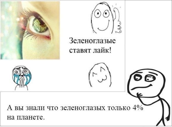 http://cs14102.vk.me/c540105/v540105187/152be/1fy0Vhlxb8A.jpg