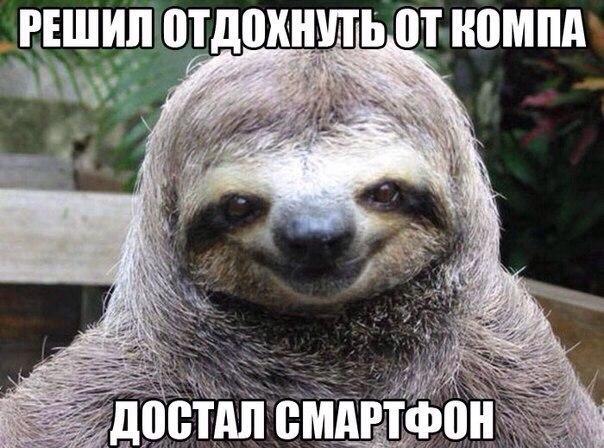 http://cs14115.vk.me/c540105/v540105208/29201/AKmyny7fPSk.jpg