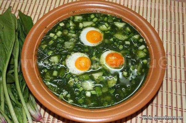 Щи щавелевые с яйцом рецепт с фото
