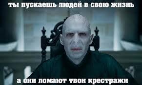http://cs14112.vk.me/c540105/v540105364/bfa4/0lHVplo1-xw.jpg