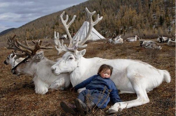 """Интересная фотография от фотографа-путешественника Hamid Sardar-Afkhami """"Люди Монголии"""""""