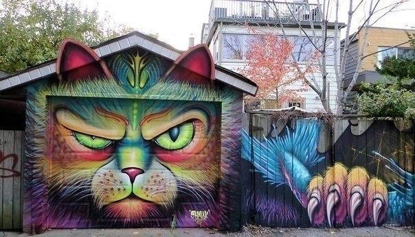Гаражный кот.