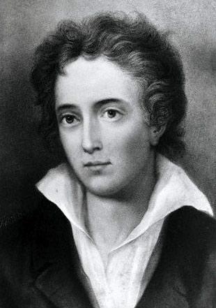 Mutability An Analysis Of Percy Shelleys Poem English