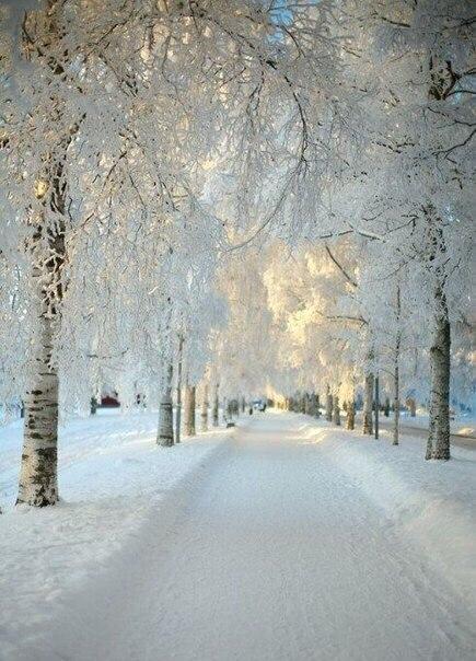 Чудеса и неповторимая красота русской зимы