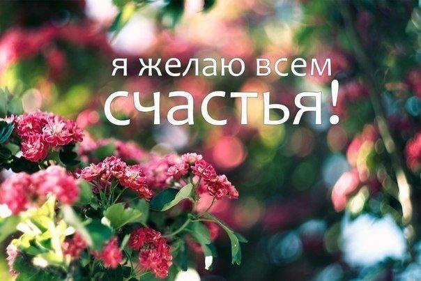 https://pp.userapi.com/c540105/v540105493/2461e/Ig_SvTN-coE.jpg